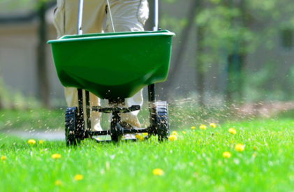 Lawn Fertilizing Service And Weed Control