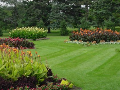 Local lawn care services and snow removal for Landscape design photos